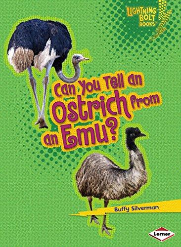 Can You Tell an Ostrich from an Emu? (Lightning Bolt Books)