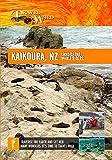 Travel Wild Kaikoura New Zealand Land of the Whale Riders