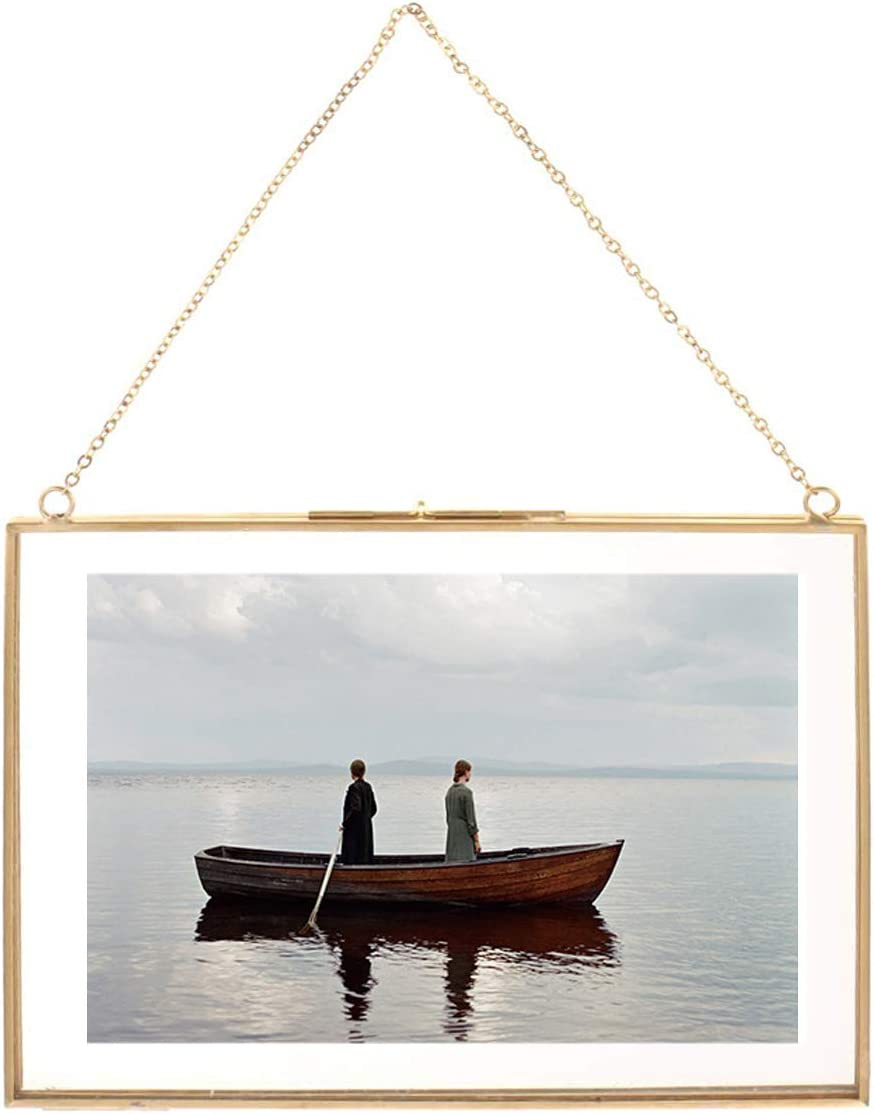 Daisylily Brass Hanging Photo Frame, Copper Glass Picture Frames Clip Modern Wall Decor Plant Specimen Artwork Ornament Display A4 12x8 Inch Gold Horizontal