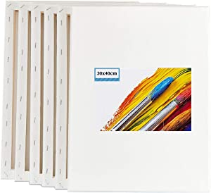 TOPARCHERY 6 Pack Blank Stretched Canvas for Painting - 100% Cotton Art Canvases Frame for Painting, Stretched Canvas for Acrylic Painting with Acid Free Triple Primed Gesso (12