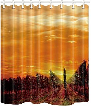QXXKK Cortina de Ducha Cortinas de Ducha Sunset Scenery Mamparas de baño Decoración para el hogar Tejido de poliéster Impermeable y a Prueba de Moho con 12 Ganchos: Amazon.es: Hogar