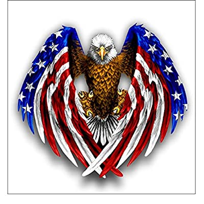 Vinyl Junkie Graphics Bald Eagle American Flag Sticker: Automotive