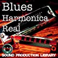Blues Harmonica Real - Large, very useful original WAVE/NKI Loops Library on DVD or for download by SoundLoad