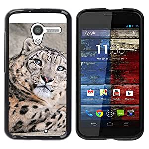 All Phone Most Case / Oferta Especial Duro Teléfono Inteligente PC Cáscara Funda Cubierta de proteccion Caso / Hard Case Motorola Moto X 1 1st GEN I // Snow Leopard