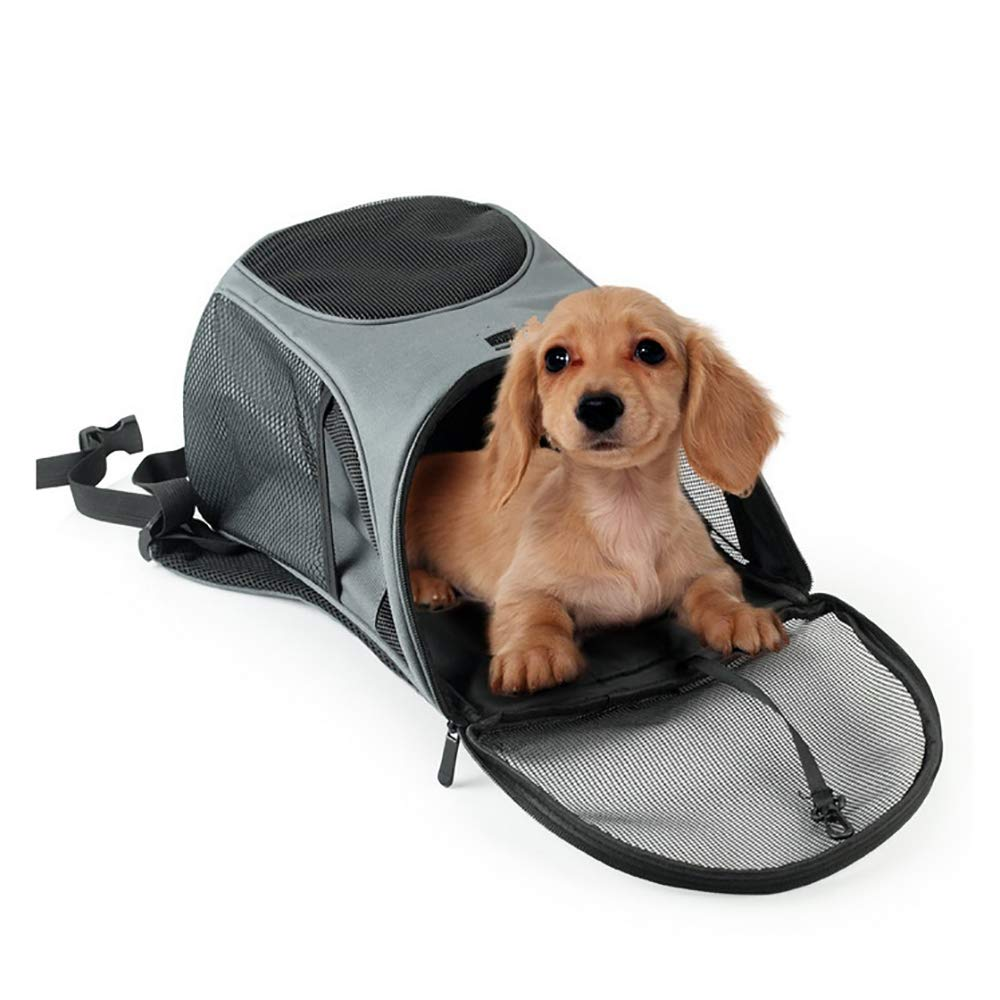 Comfortable Dog Cat Carrier Backpack for Small Dogs and Cats Airline-Approved, Designed for Travel, Hiking, Walking & Outdoor Use