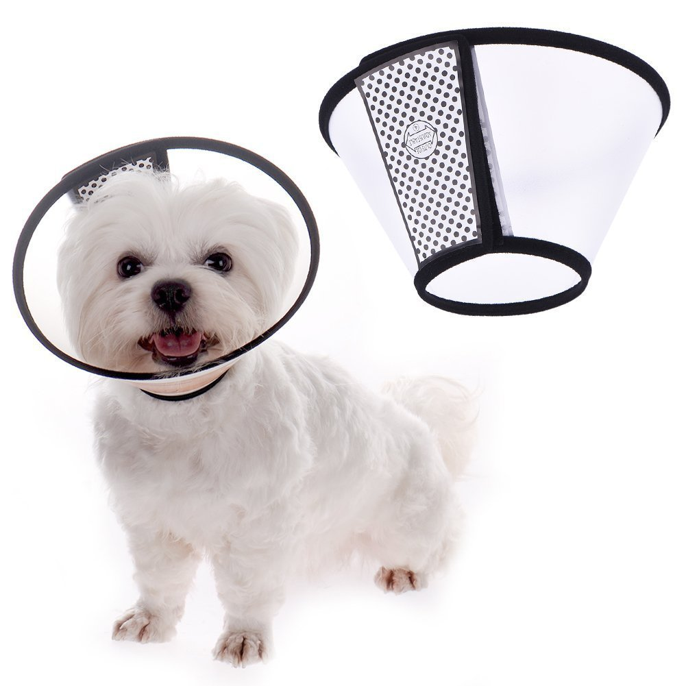 Ducomi Elizabethan–Collerette de protection réglable pour chien et chat – Anti-griffures et anti-morsures – Permet d'accélérer la guérison des blessures