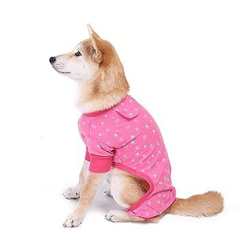 Amazon.com: Perro Gato Jumpsuit pijamas, Speedy mascota ...