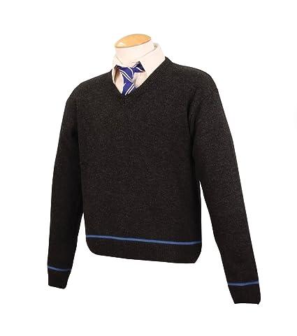 3047ca442 Amazon.com  Harry Potter School Sweater w  Tie - Ravenclaw - Small ...
