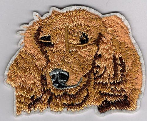 - Sweetest Looking Dog Embroidered Sew or Iron-On Patch - Size 2 1/2 x 2