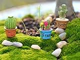 yueton 7pcs Cactus & Flower Pot Plant Miniature