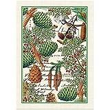 Michel Design Works Spruce Cotton Kitchen Towel, Green