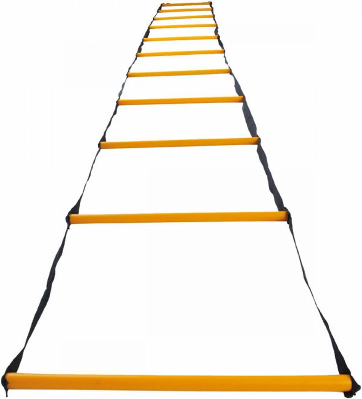 Derbystar - Escalera de coordinación, 2 x 0,2 m: Amazon.es ...