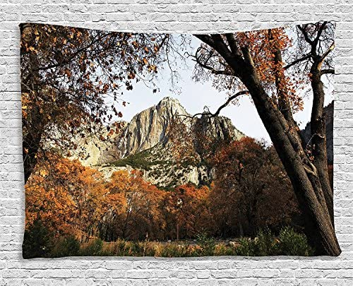 Ambesonne Yosemite Tapestry, Landscape of Yosemite National Park California with Autumn Trees Mountains Fall Season, Wide Wall Hanging for Bedroom Living Room Dorm, 80 X 60 , Brown