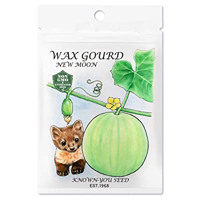 Non-GMO, Untreated Seeds, F1 Hybrid Wax Gourd Seeds (Winter Melon), Variety: New Moon, Known-You Seed : Garden & Outdoor