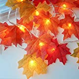 20 LED Fall Artificial Maple Leaf String Lights Battery Operated For Pub, Festival, Wedding Parties, Dorm Decorations, Dressing Table