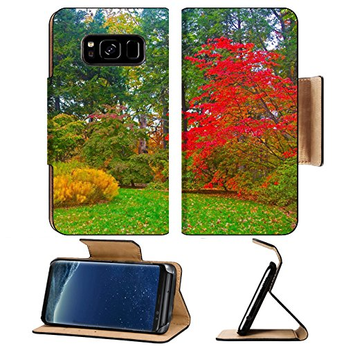 Liili Premium Samsung Galaxy S8 Plus Flip Pu Leather Wallet Case Autumn palette US National Arboretum in the Fall Washington DC - Arboretum Stores In