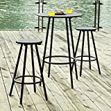Haotian Bar Set-1 Round Bar Table and 2 Stools, Home Kitchen Outdoor Garden Bar Set,Patio Furniture,Bistros Sets Patio, OGT08-SCH, Black