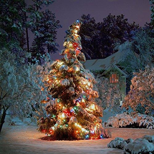 Flexzion Lighting Waterproof Christmas Decoration
