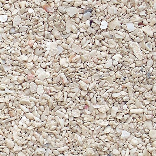 mySimple Products Safe & Non-Toxic 20 Pound Bag of Sand Decor Made of Genuine Coral for Freshwater & Saltwater Aquarium w/Light Contemporary Eco Friendly Beneficial Filtering Reef Style [Off White]