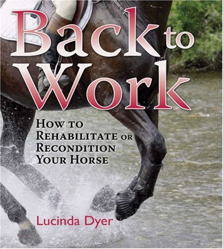 Back Work Rehabilitate Recondition Horse product image