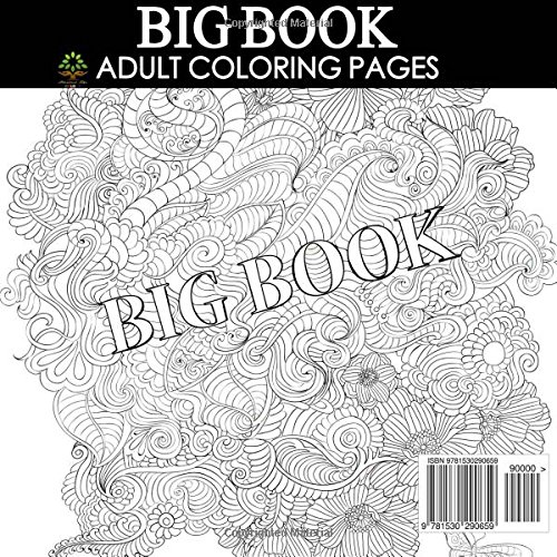 Amazon.com: BIG Book of Adult Coloring Pages: Over 300 Designs ...