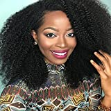 """Perpetuum Shiny Brazilian Virgin Human Hair Wigs 4B 4C Afro Kinky Curly Wigs for Black Women Glueless Lace Front Wigs with Baby Hair 130% Density(18"""" Lace Front Wig) Review"""