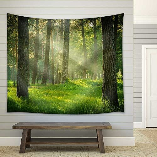 Forest Fabric Wall