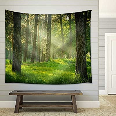 Made With Top Quality, Wonderful Handicraft, Forest Fabric Wall