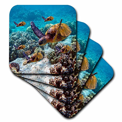 - 3dRose Sea Turtles - Ceramic Tile Coasters, set of 4 (cst_26850_3)