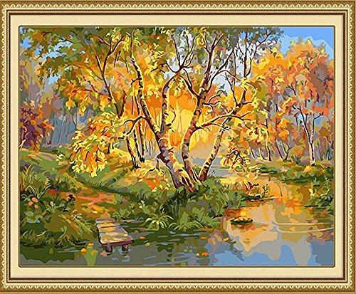 DIDIDD Autumn Landscape Digital Painting Hand,Golden,40x50cm -