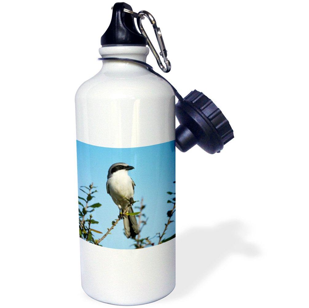 3dローズ2 WB 250856 _ 2フリップストロー水ボトル、21オンス B06XB5N2QF