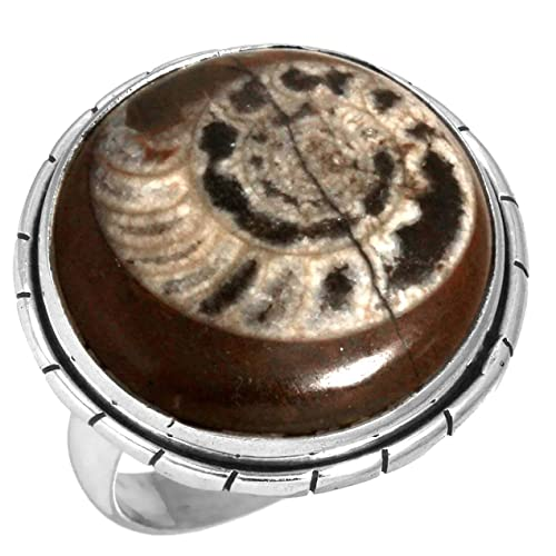 Amazon.com: Natural Ammonite Brown Fossil Gemstone Ring Solid 925 ...