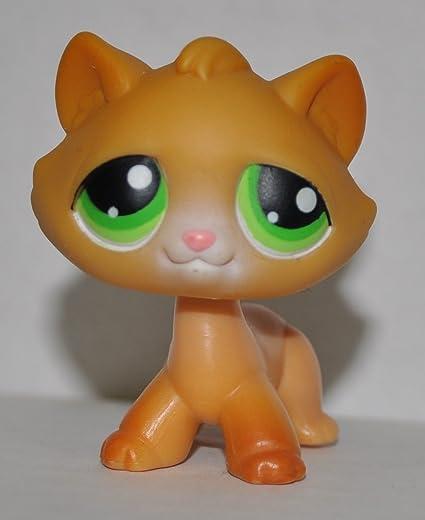 Amazoncom Tabby Kitten 110 Orange Green Eyes Littlest Pet
