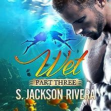 Wet Part 3 Audiobook by S. Jackson Rivera Narrated by Deborah Reeves