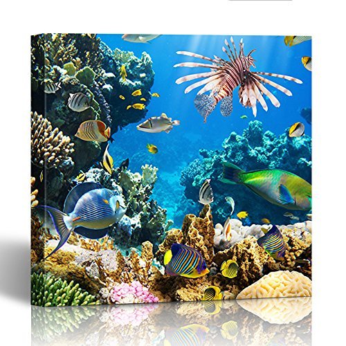 Emvency Painting Canvas Print Square 20x20 Inches Red Underwater of Tropical Fish on Coral Reef Blue Sea Animal Scuba Egypt Dive Wall Art Decoration Wrapped Wooden Frame -