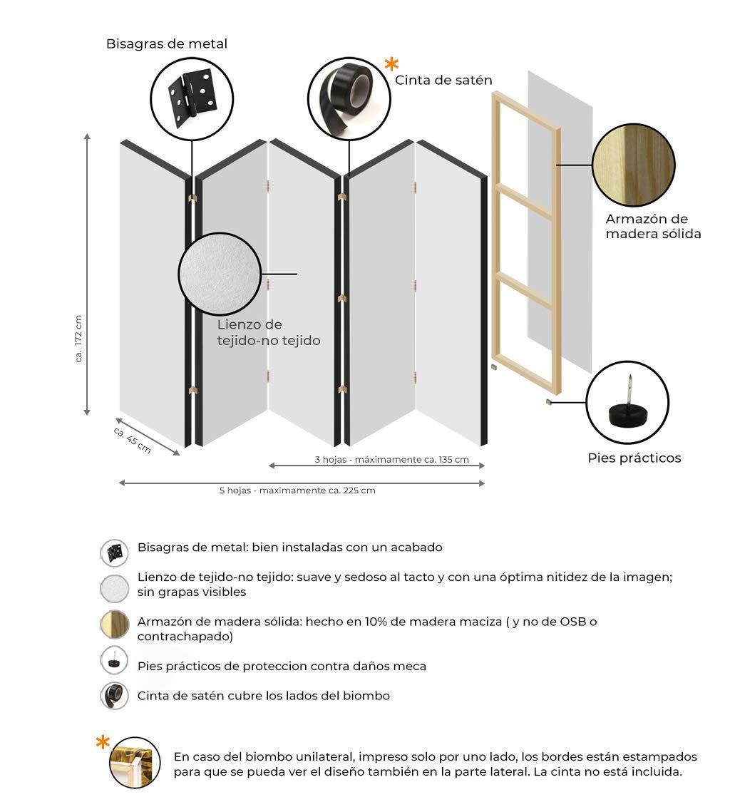 murando - Biombo - 225x172 cm de impresión Unilateral en el Lienzo de TNT 100% Opaco - Decoración Cuarto - Biombo de Madera con Imagen Impresa - ...