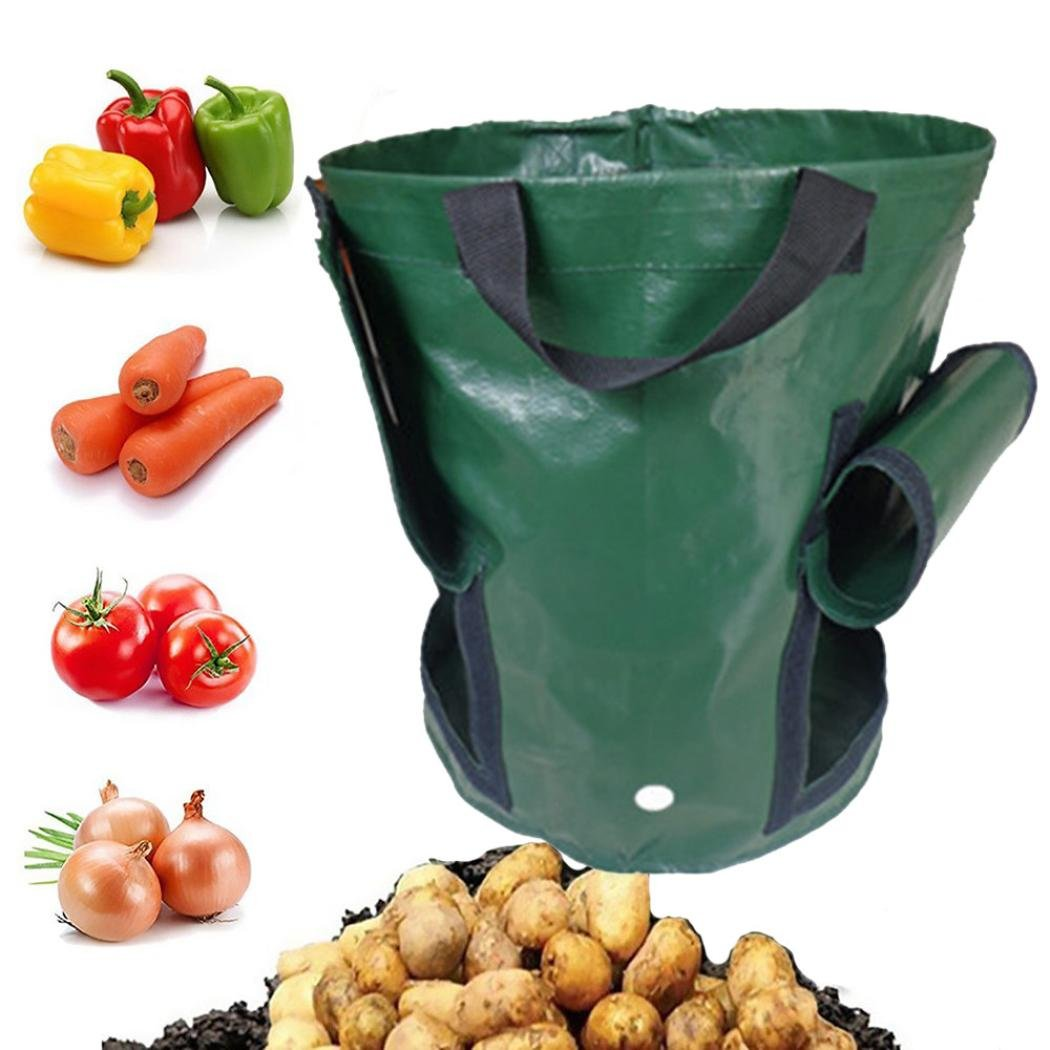 Chrikathy Garden Gallon Planter Double Mouth Bag Growing Vegetables Plant Potato Carrot Onion PE Container Durable Bag Pouch Root Pot Side Window Green