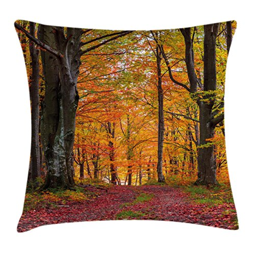 Shady Tree Studio (Autumn Throw Pillow Cushion Cover by Ambesonne, Fall Forest with Shady Deciduous Trees and Faded Leaf Magic Woodland Picture, Decorative Square Accent Pillow Case, 20 X 20 Inches, Apricot Brown Red)