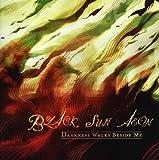 Darkness Walks Beside Me by Black Sun Aeon (2009-04-28)