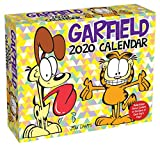 img - for Garfield 2020 Day-to-Day Calendar book / textbook / text book