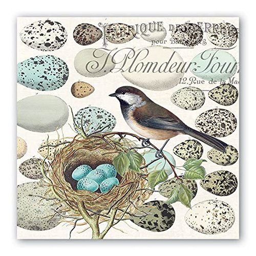 Michel Design Works 20 Count 3-Ply Paper Luncheon Napkins, Nest & Eggs