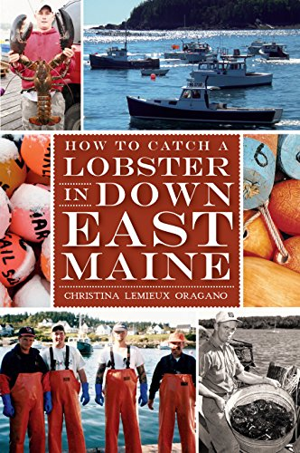 How to Catch a Lobster in Down East Maine (American ()