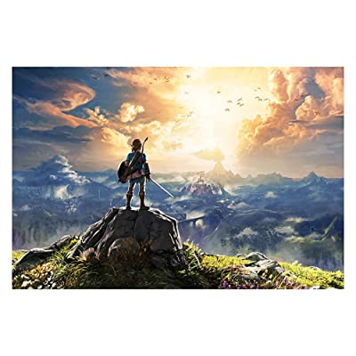 Jigsaw Puzzle A Decompression Super high Difficulty Large Wooden Quality Zelda Legend Game Puzzle (Color : D, Size : 1000 Pieces: 75.5x50.5cm): Toys & Games