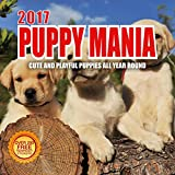 Best Wall Calendars 2017 Puppy Mania Wall Calendar with 210 Reminder Stickers, 12-Inch x 12-Inch