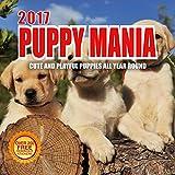 2017 Puppy Mania Calendar- 12 x 12 Wall Calendar - 210 Free Reminder Stickers