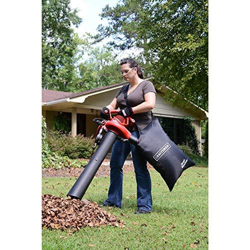 leaf blower with bag - 4