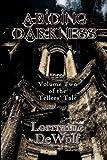 Abiding Darkness, Lorraine DeWolf, 1613420951