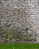 Promaster Scenic Backdrops - 8' x 10' - Garden Wall