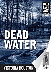 Dead Water (Loon Lake Mystery Book 3)