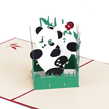 Amazon paper spiritz panda pop up birthday card wedding paper spiritz panda pop up birthday card wedding christmas anniversary laser cut 3d pop up m4hsunfo